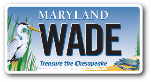 CBT-WADE-happy-plate